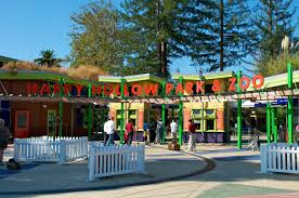 Ardenwood Pumpkin Patch Fremont by Relomom Farms And Petting Zoos