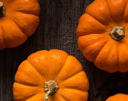 Pumpkin Spice Condoms Images by Pumpkin Spice Lube Lubricant Glamour