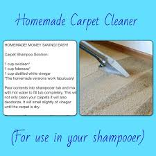 Tti Floor Care Wikipedia by Best 25 Home Hoovers Ideas On Pinterest Flea In House Home