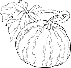 Homey Inspiration Vegetable Coloring Pages