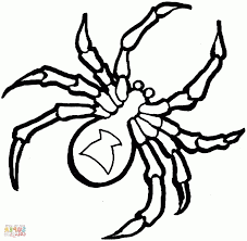 Coloring Pages Spider Free