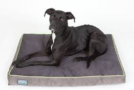 Top Rated Orthopedic Dog Beds by Best Orthopedic Dog Beds Our Top 10 Picks