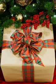 Christmas Tree Saplings Ireland by 187 Best Here U0027s To The Holidays Images On Pinterest Merry
