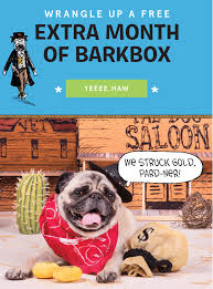 BarkBox Bark Box Coupons Arc Village Thrift Store Barkbox Ebarkshop Groupon 2014 Related Keywords Suggestions The Newly Leaked Secrets To Coupon Uncovered Barkbox That Touch Of Pit Shop Big Dees Tack Coupon Codes Coupons Mma Warehouse Barkbox Promo Codes Podcast 1 Online Sales For November 2019 Supersized 90s Throwback Electronic Dog Toy Bundle Cyber Monday Deal First Box For 5 Msa