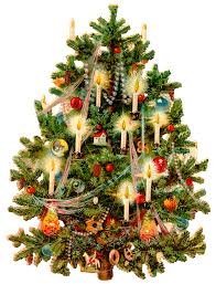 Silvertip Fir Christmas Tree by Victorian Christmas Tree U2013 Wings Of Whimsy
