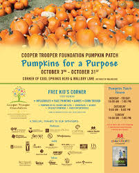 Pumpkin Patch Nashville Area by Pumpkins For A Purpose Franklin Tn Downtown Events Kids