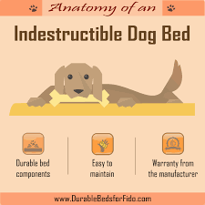 Chewproof Dog Bed by The Anatomy Of An Indestructible Dog Bed