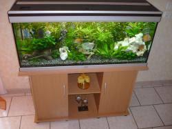 aquarium aquatlantis petites annonces aquarium aquatlantis pas cher