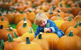 Rheault Farm Pumpkin Patch Fargo Nd by Attractions Official North Dakota Travel U0026 Tourism Guide