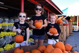 Sarasota Pumpkin Festival Location by Photo Gallery 24th Annual Pumpkin Festival Alyssa 4 Mallory