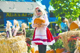 Daves Pumpkin Patch Tampa by Richmond Housewives