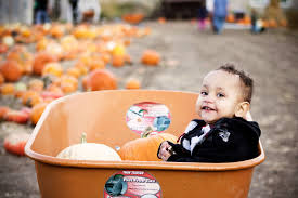 Pumpkin Patch Utah by Big Acuna Photography An Afternoon At The Pumpkin Patch Riverton Utah