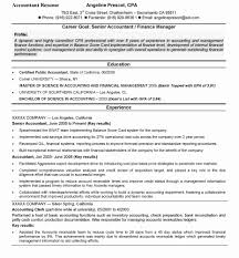 Resume Format For Accounts Manager Lovely Summary Examples Accounting