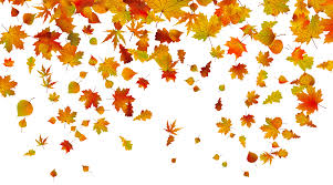 Fall Leaves PNG Clipart Image is available for free View full size