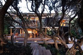 100 Modern Tree House Plans Under Pohutukawa Herbst Architects
