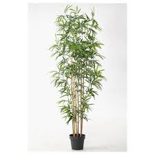 Good Plants For Bathrooms Nz by Artificial Flowers U0026 Plants Ikea Ireland Dublin