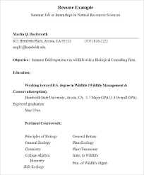 Resume Internship Accounting Example For Summer