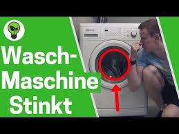 llll ein ratgeber gegen eine muffige waschmaschine warum