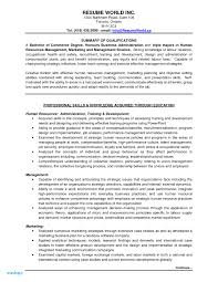 Accounting Resume Summary Examples - Saroz.rabionetassociats.com Sample Resume For An Entrylevel Mechanical Engineer Monstercom Summary Examples Data Analyst Elegant Valid Entry Level And Complete Guide 20 Entry Level Resume Profile Examples Sazakmouldingsco Financial Samples Velvet Jobs Accounting New 25 Best Accouant Cetmerchcom Janitor Genius Mechanic Example Livecareer 95 With A Beautiful Career No Experience Help Unique Marketing