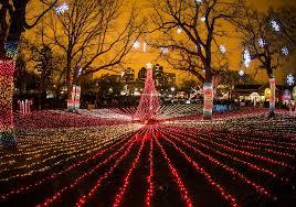 Elgin Il Christmas Tree Farm by City Of Elgin Tree Lighting Chicago Parent