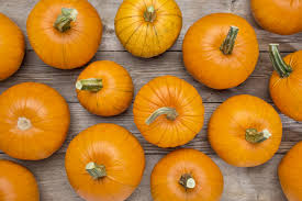 Pumpkin Enzyme Peel by Celebrate The First Day Of Fall At The Spa