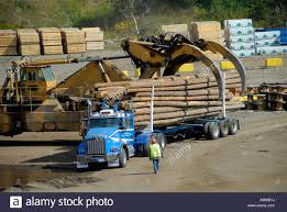 Logging Trucks Transport Lumber Forestry Logging Wood Industry Stock ... The First Sherwood Lumber Trucks Fiery Wreck Hurts Two After Lumber Truck Blows Tire On I81 North In Lumber At Cstruction Site Stock Photo 596706 Alamy Delivery Service 2 Building Supplies Windows Doors Truck Highway With Cargo 124910270 Piggy Back Logging Trucks Transport Forestry Wood Industry Fort Worth Loading Check And Youtube Flatbed Stock Photo Image Of Hauling Industry 79874624 Jeons Leslie Jenson Fine Art