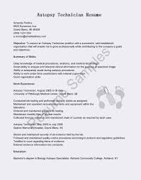 25 Biology Lab Skills Resume | Busradio Resume Samples 25 Biology Lab Skills Resume Busradio Samples Research Scientist Ideas 910 Lab Technician Skills Resume Wear2014com Elegant Atclgrain Glamorous Supervisor Examples Objective Retail Sample Labatory Analyst Velvet Jobs 40 Luxury Photos Of Technician Best Of Labatory Lasweetvidacom Hostess 34 Tips For Your Achievement Basic For Hard Accounting List Office Templates Work Experience Template Email