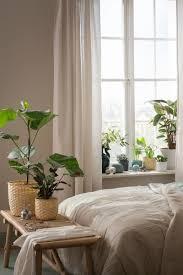 pin auf ikea pflanzen