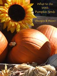 Pumpkin Seeds Prostate Cancer by What To Do With Pumpkin Seeds And Squash Seeds Go Dairy Free