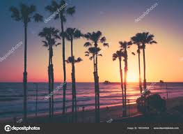 California Beach Sunset Palms Stock Photo