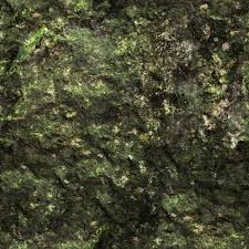 Bright Green Mountain Wall Seamless Texture Mystery Dark Leaking Wet Moldy Cave Solid Surface