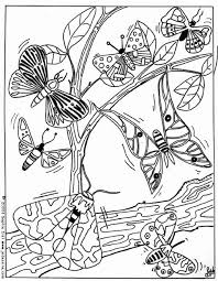 Black And White Butterfly Coloring Pages