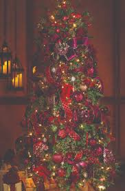 Raz Christmas Trees 2012 by 25 Best Pinos Images On Pinterest Christmas 2017 Outdoor