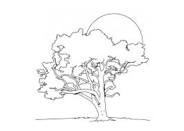 Tree Coloring Pages Bare