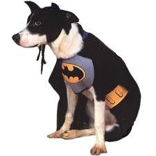 cat batman costume batman costume from buycostumes costumess