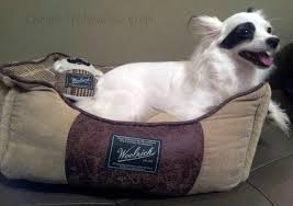 woolrich home pet beds review cheap is the new classy
