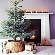 Plantable Christmas Trees For Sale by Best 25 Christmas Tree Quotes Ideas On Pinterest Farmhouse