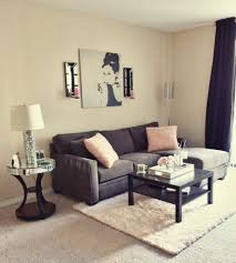 Cute Living Room Ideas On A Budget by Apartment Living Room Decorating Ideas Pictures Small Room Design