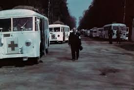 White Buses - Wikipedia