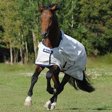 Best Horse Shedding Blade by Horse And Pony Blankets Adams Horse Supplies