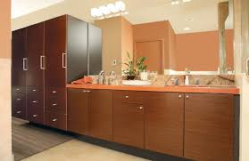 Huntwood Cabinets Red Deer by Downtown Loft Custom Cabinets