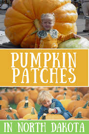 Southern Ohio Pumpkin Patches by Pumpkin Patches In North Dakota Road Trips For Families