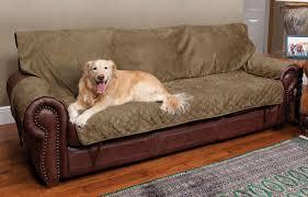 Sofa Bed Bar Shield Uk by Dog Proof Sofa Covers Centerfieldbar Com