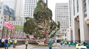 Rockefeller Christmas Tree Lighting 2014 Watch by Secrets Of The Rockefeller Center Christmas Tree Am New York