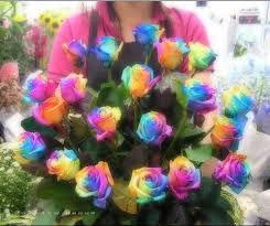 لغة الورود <<..>>