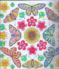 Birds Butterflies Colouring Book Using