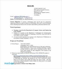 Resume Summary Examples For Software Developer Format Download Engineer