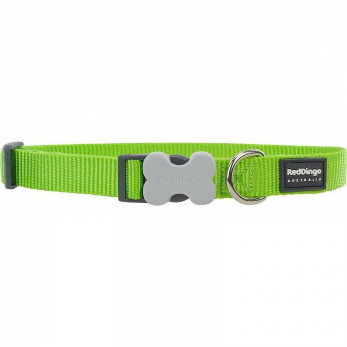 Red Dingo Bucklebone Classic Dog Collar - Lime Green, 31cm to 47cm