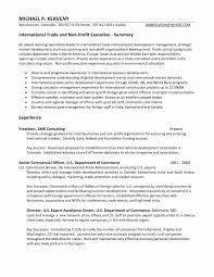 It Program Manager Resume Sample Fresh Unfor Table Project