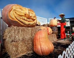 Half Moon Bay Pumpkin Patch Ca by Halloween 2015 Events Bay Area Pumpkin Patches Haunted
